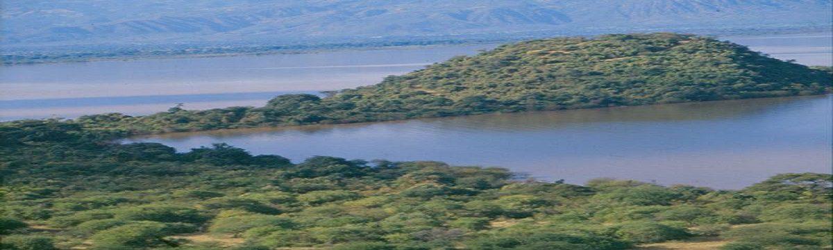 Chamo and Abaya Lakes