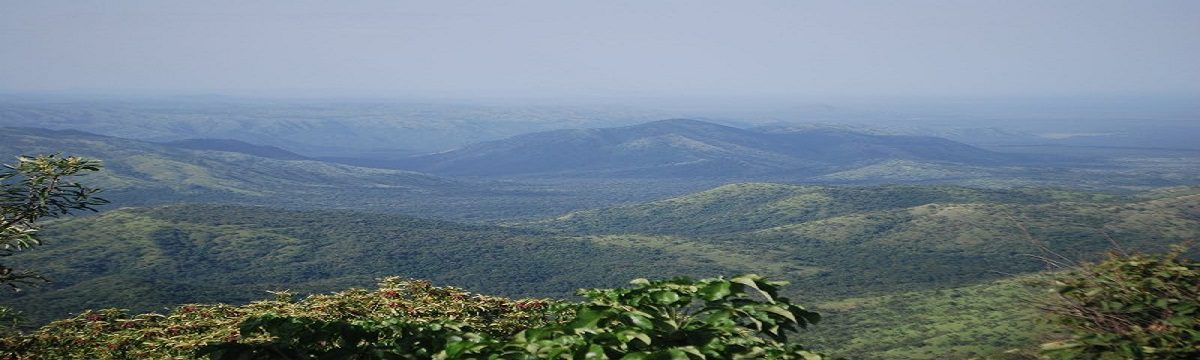 Mago National Park